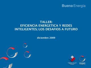 TALLER: EFICIENCIA ENERGETICA Y REDES INTELIGENTES; LOS DESAFIOS A FUTURO diciembre 2009