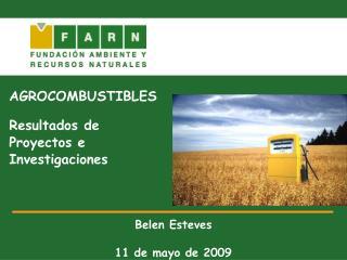 AGROCOMBUSTIBLES Resultados de  Proyectos e  Investigaciones Belen Esteves 11 de mayo de 2009
