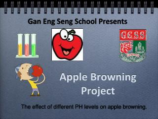 Apple Browning Project