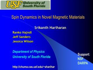 Spin Dynamics in Novel Magnetic Materials