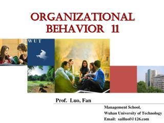 Organizational Behavior  11
