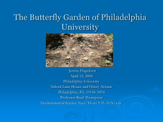The Butterfly Garden of Philadelphia University