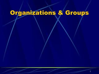 Organizations & Groups