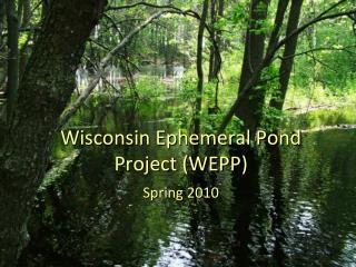 Wisconsin Ephemeral Pond Project (WEPP)