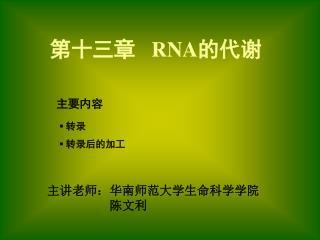 第十三章    RNA 的代谢