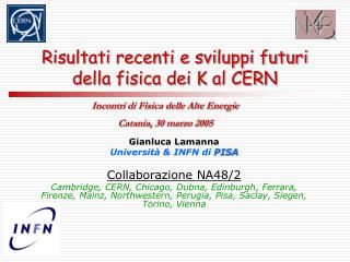 Risultati recenti e sviluppi futuri della fisica dei K al CERN