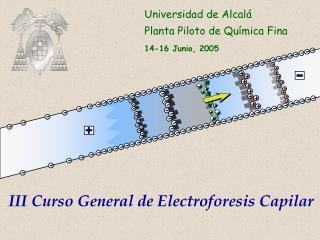 Universidad de Alcalá Planta Piloto de Química Fina 14-16 Junio, 2005