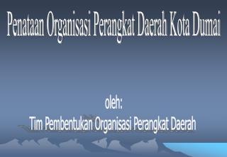 oleh: Tim Pembentukan Organisasi Perangkat Daerah