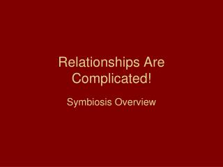 Relationships Are Complicated!