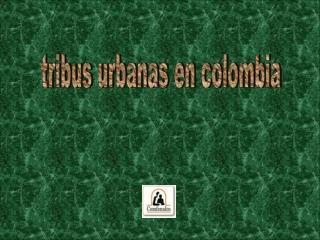tribus urbanas en colombia
