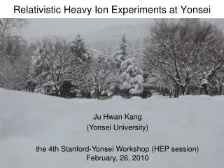 Relativistic Heavy Ion Experiments at Yonsei