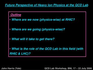 Future Perspective of Heavy Ion Physics at the QCD Lab