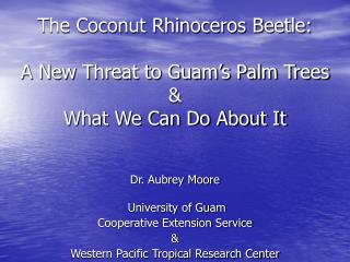 The Coconut Rhinoceros Beetle: A New Threat to Guam�s Palm Trees & What We Can Do About It