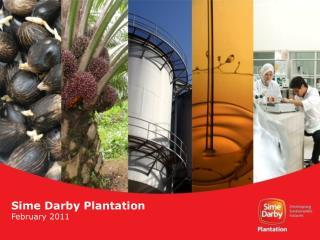 Sime Darby Plantation February 2011