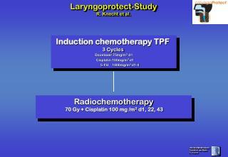 Induction chemotherapy TPF  3 Cycles Docetaxel 75mg/m 2  d1    Cisplatin 100mg/m 2  d1