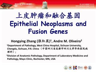 上皮肿瘤和融合基因 Epithelial Neoplasms and Fusion Genes
