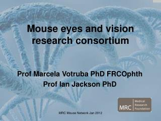 Mouse eyes and vision research consortium