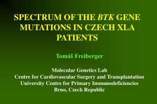 SPECTRUM OF THE  BTK  GENE MUTATIONS IN CZECH XLA PATIENTS