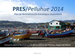 PRES / Pelluhue 2014 Plan de Reconstrucción Estratégico-Sustentable
