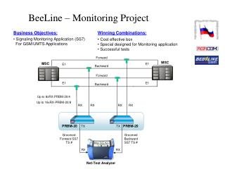 BeeLine – Monitoring Project