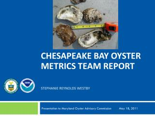 Chesapeake Bay Oyster Metrics TEAM report STEPHANIE  reynolds  WESTBY