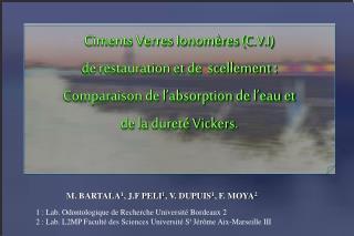 M. BARTALA 1 , J.F PELI 1 , V. DUPUIS 1 , F. MOYA 2