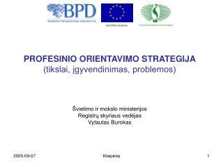PROFESINIO ORIENTAVIMO STRATEGIJA (tikslai, įgyvendinimas, problemos)