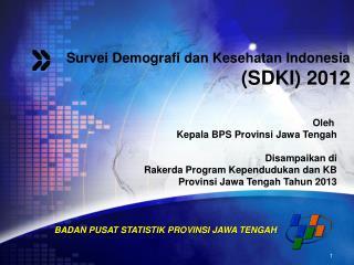 Survei Demografi dan Kesehatan Indonesia (SDKI) 2012