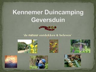 Kennemer Duincamping Geversduin