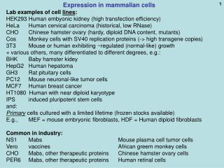 Expression in mammalian cells Lab examples of cell  lines :