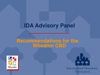 IDA Advisory Panel