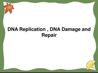 DNA Replication , DNA Damage and Repair