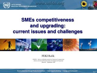 SMEs competitiveness  and upgrading:  current issues and challenges