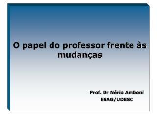 O papel do professor frente �s mudan�as
