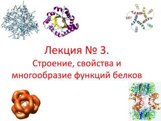 Лекция №  3 . Строение, свойства и многообразие функций белков
