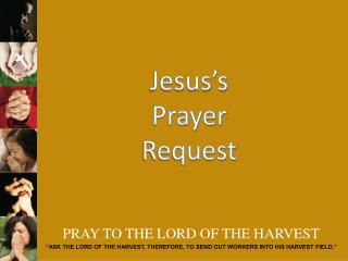 PRAY TO THE LORD OF THE HARVEST
