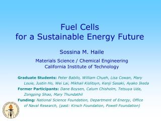 Fuel Cells for a Sustainable Energy Future