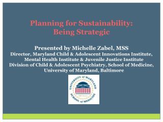 Planning for Sustainability:  Being Strategic Presented by Michelle Zabel, MSS