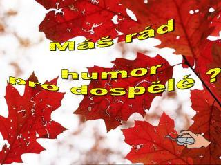 Máš rád  humor  pro dospělé ?
