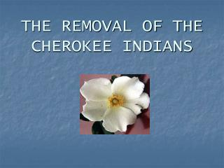 THE REMOVAL OF THE CHEROKEE INDIANS