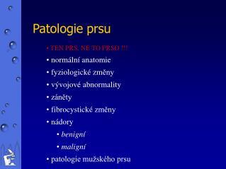 Patolog ie prsu