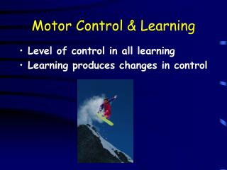 Motor Control  Learning