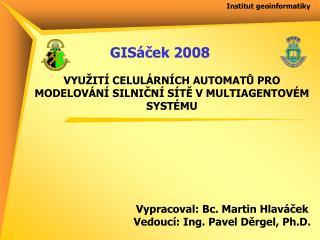 Institut geoinformatiky