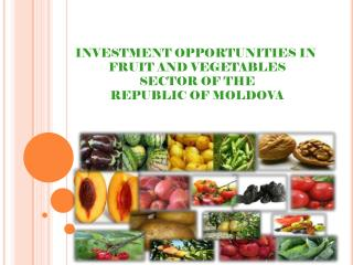 INVESTMENT OPPORTUNITIES IN  FRUIT AND VEGETABLES  SECTOR OF THE  REPUBLIC OF MOLDOVA
