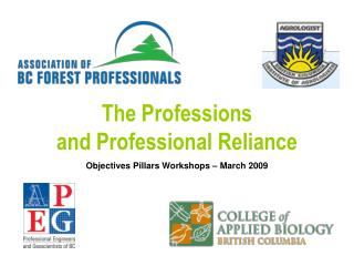 The Professions and Professional Reliance