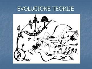 EVOLUCIONE TEORIJE