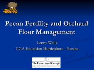 Pecan Fertility and Orchard Floor Management