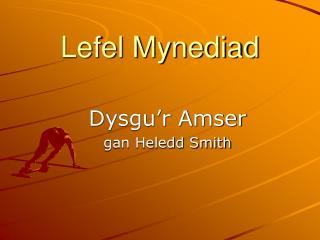 Lefel Mynediad