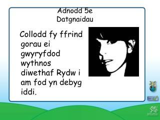 Adnodd 5e  Datgnaidau