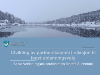 Utvikling av partnerskapene i relasjon til faget utdanningsvalg